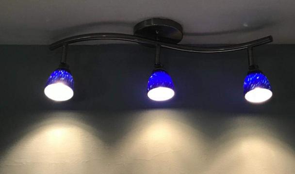 Direct Lighting Blue Track Lights